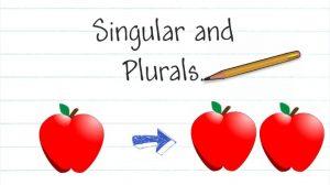 singular and plural in italian